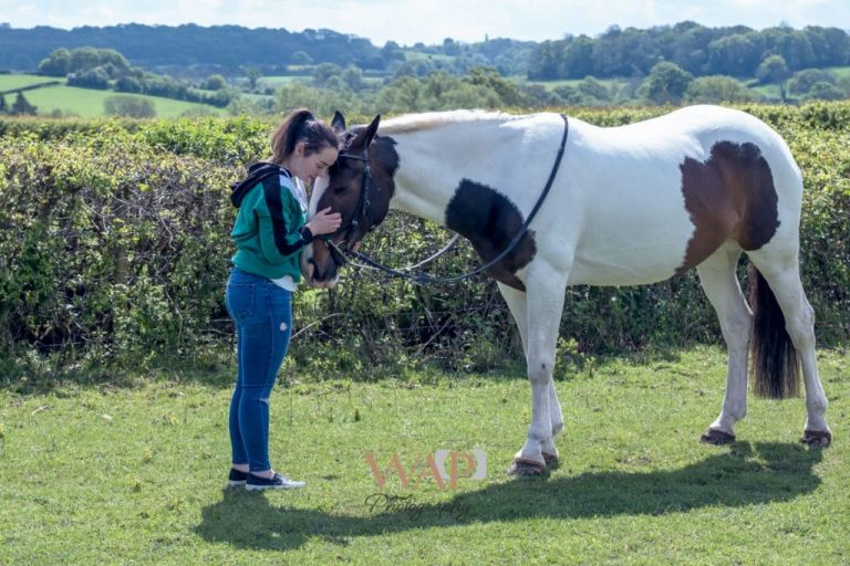 close friends - Dolly and Louise by Birmingham Equine Photography at an equine portrait session