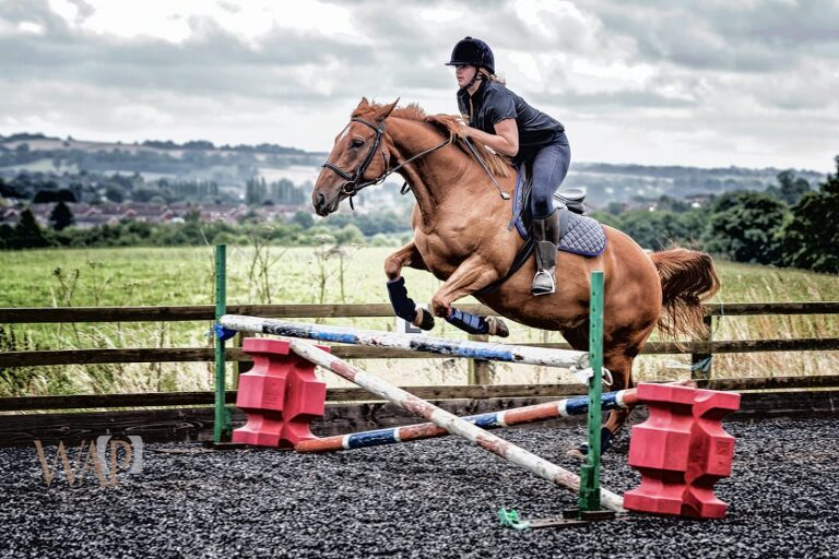Birmingham Equine Photography | What a Picture Photography | Connie over the jumps